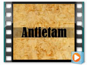 Click here to see the Antietam game on YouTube